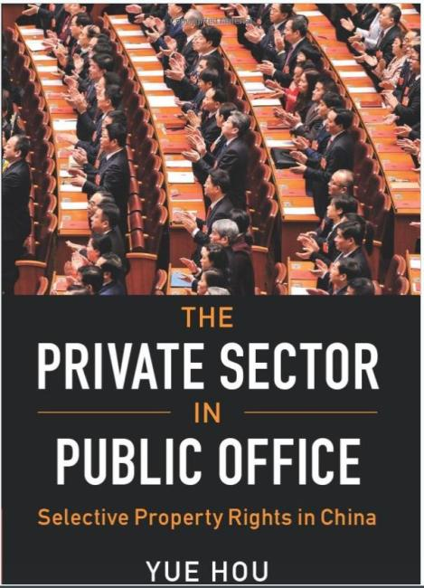 Private Sector in Public Office